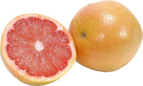 what are citrus fruits do fruit flies bite