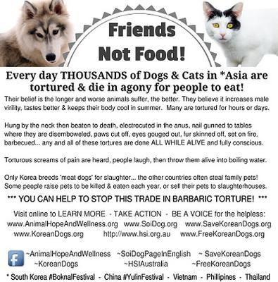 Dogs and Cats are FRIENDS not FOOD! Print and hand out this flyer!
