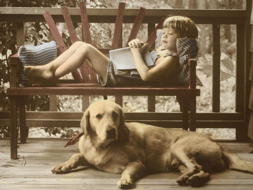 best pets for kids to have - dog