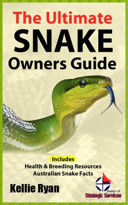buy pet snake care book