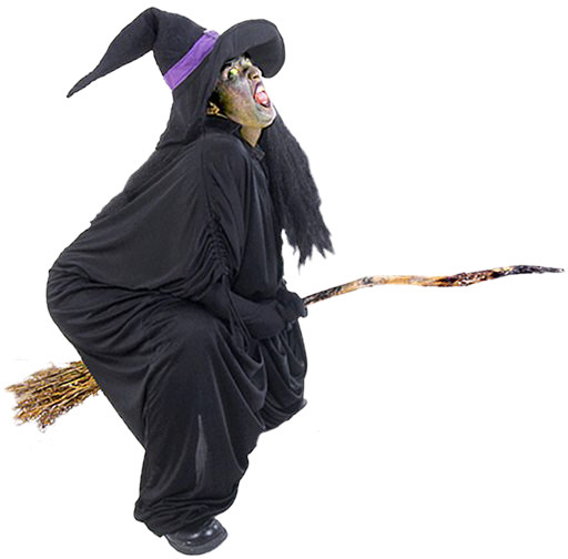 witch with broom halloween costume