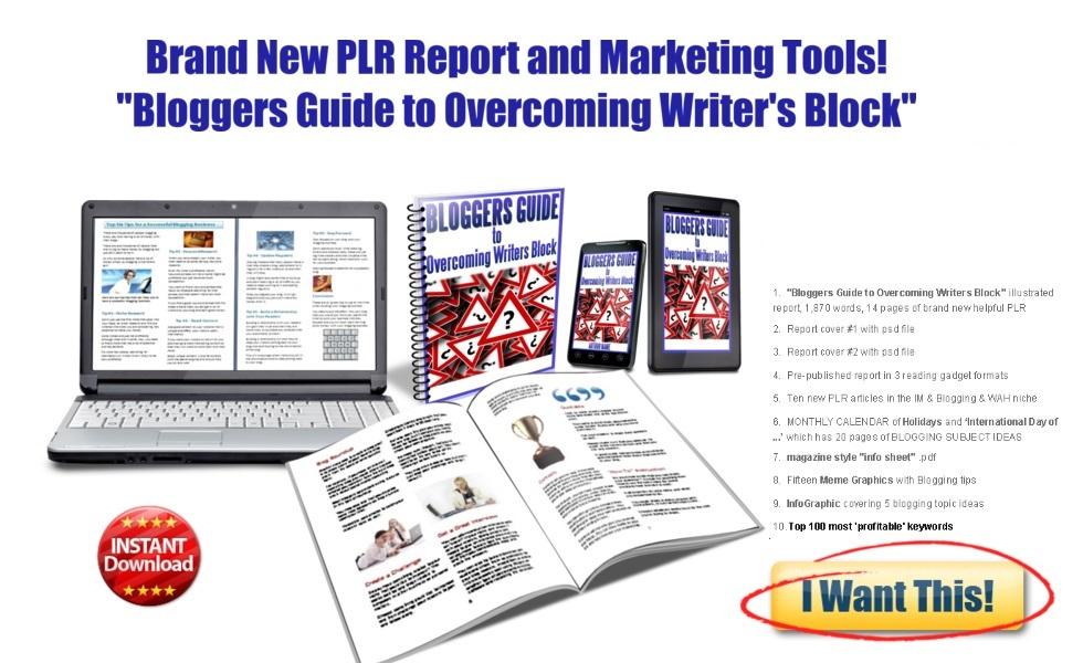Blogging Guide PLR content