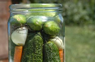 How to Preserve Foods by Canning and Freezing