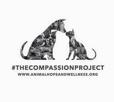 #TheCompassionProject *Compassion Through Action*