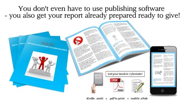 stress report plr published for you